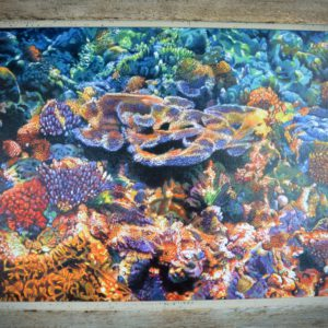 oil-painting-reef-coral-under-water